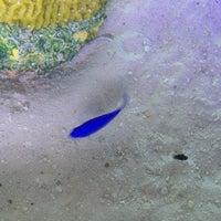 Das Foto wurde bei 50 Ocean von Lili G. am 8/12/2014 aufgenommen