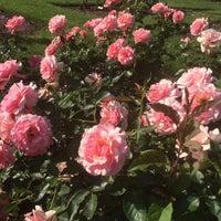 Photo taken at Julia Davis Rose Garden by Jim L. on 7/4/2015