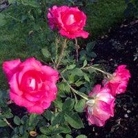 Photo taken at Julia Davis Rose Garden by Jim L. on 7/4/2013