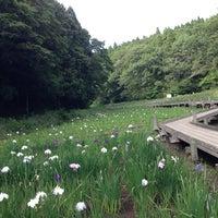 Photo taken at Showa no Mori by kaorun on 6/15/2013