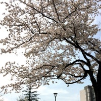 Photo taken at Nakano Central Park South by Mai on 3/31/2016