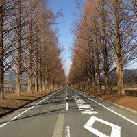 Photo taken at メタセコイア並木道 by Masahiko N. on 2/3/2013