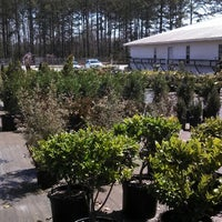 Photo taken at Blackwell's Nursery & Sod Farm by GRAY on 3/28/2013