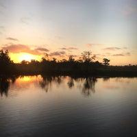 Bayou Segnette State Park Park In Westwego