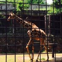 Photo taken at Giraffe by Yoü ☆. on 5/22/2016