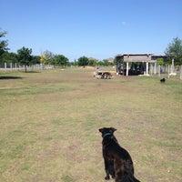 Photo taken at Round Rock Dog Depot by Karen K. on 5/11/2013