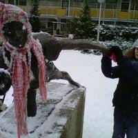 Photo taken at 2e Amstelveense Montessorischool by aalt s. on 1/21/2013