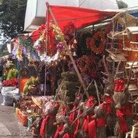 Foto tomada en Mercado de Plantas y Flores  Madreselva por Sandra S. el 12/1/2012