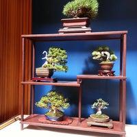 Photo taken at Chicago Botanic Garden Bonsai Studio #2 by Rebecca K. on 8/17/2013