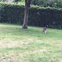 Photo taken at Hondenweide Park Casier by Baptiste T. on 6/24/2015
