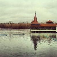 Photo taken at Hévízi-tó by Zoltán H. on 3/1/2013