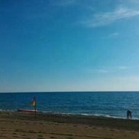 10/21/2016 tarihinde GüN🅰L🅿   . .ziyaretçi tarafından Sah İnn Sahil'de çekilen fotoğraf