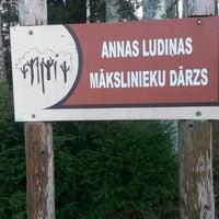 รูปภาพถ่ายที่ Mākslinieku dārzs โดย Belkins B. เมื่อ 11/21/2015