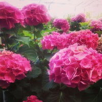 Photo taken at Lowe's Home Improvement by Lovely S. on 6/13/2015
