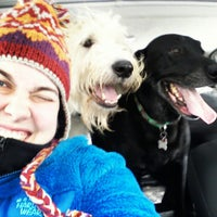Photo taken at Shelby Farms Dog Park by Charlotte H. on 12/26/2012