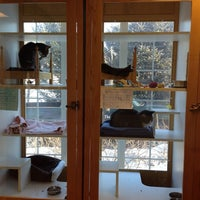 Photo taken at The Cat Doctor Of Dover by Dawn Z. on 2/24/2014