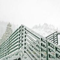 Photo taken at Alpine Meadows Lodge by ArtJonak on 3/26/2013