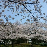 Photo taken at 篠崎公園 鹿骨地区 by だい on 4/6/2017