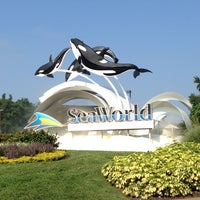 Photo taken at SeaWorld Orlando by Marcio F. on 8/7/2013