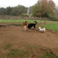 Photo taken at Alston Dog Park by Sung P. on 11/7/2012