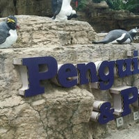 Photo taken at Penguin & Puffin Coast by Madeline S. on 7/1/2015