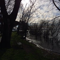 Photo taken at Parco Comunale Trevignano by Enrico Maria C. on 2/16/2014