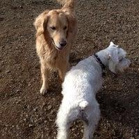 Photo taken at Oakton Dog Park by Daniela P. on 1/1/2014