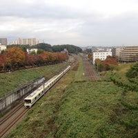Photo taken at 多摩東公園 by Yo M. on 11/5/2014