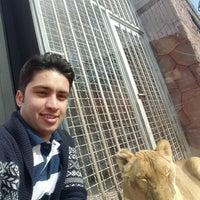 Photo taken at Barajin Zoo | باغ وحش باراجين by Afshin M. on 3/27/2017