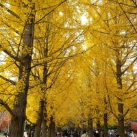 Photo taken at Nami Island by Sunghwan B. on 10/25/2012