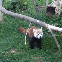 Photo taken at Zoo Brew by Jillissa M. on 6/6/2013