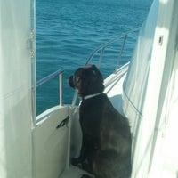 Photo taken at Cruising by Greg W. on 11/25/2012