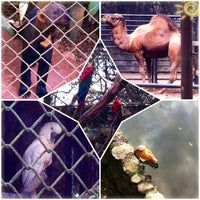 Photo taken at Zoo Safari by Karla . on 7/13/2013