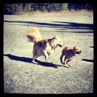 Photo taken at Baron Cameron Dog Park by CrunchyCarlos 🌴 on 10/13/2012