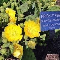 Photo taken at Meadowlark Botanical Gardens by CrunchyCarlos 🌴 on 6/8/2013
