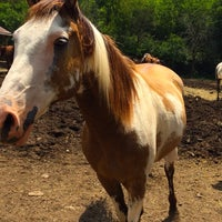 Photo taken at Juro Stables by Aysel L. on 7/23/2015