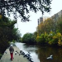 Photo taken at Соломбалка by Elena ☀️ S. on 9/18/2016