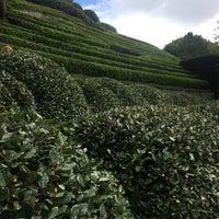 Снимок сделан в Les Jardins d'Étretat пользователем Britt B. 8/4/2017