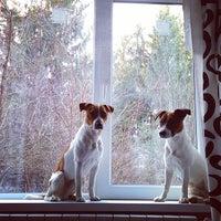 Photo taken at Ёшкина Дача by Yoshka on 11/23/2014