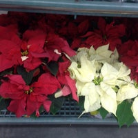 Photo taken at Lowe's Home Improvement by Mollie G. on 12/16/2015