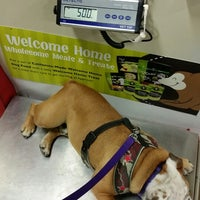 Photo taken at Centinela Feed & Pet Supply by Taneshia C. on 5/10/2014