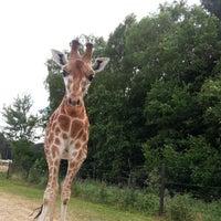 Photo taken at Serengeti Park by Dmitry S. on 7/22/2013