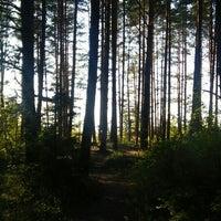 Photo taken at Nude Beach Narva-Jõesuu by Diana O. on 8/9/2015