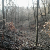 Photo taken at Tree Stand by Steven F. on 11/27/2012