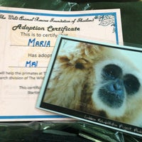 Photo taken at Gibbon Rehabilitation Project by Мария Р. on 4/24/2013
