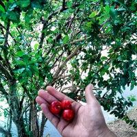 Photo taken at Parque das Frutas by Guilherme T. on 2/26/2013