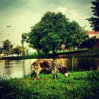 Photo taken at Parque das Frutas by Guilherme T. on 2/9/2013