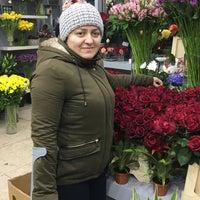 Photo taken at Belgraes Flowers by Zeynep T. on 2/13/2017