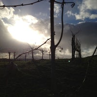 Photo taken at Baily Vineyard & Winery by Steve S. on 1/28/2013
