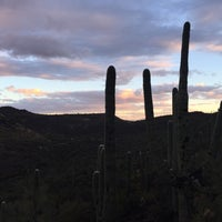 Photo taken at Tumamoc Hill by Andrew R. on 3/9/2017